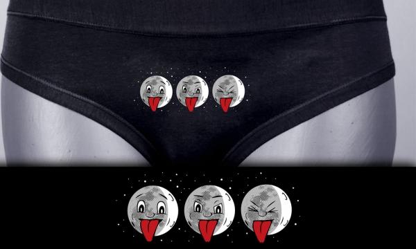 Detail návrhu Měsíčky