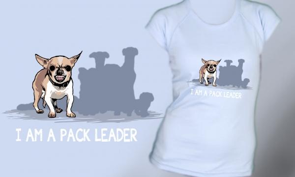 Detail návrhu pack leader