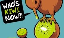 Návrh Kiwi