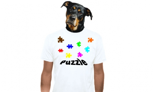 Detail návrhu Puzzle