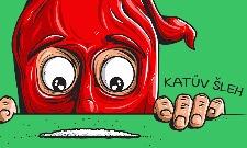 Katův šleh