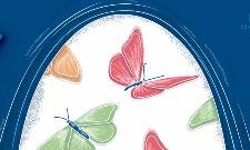 Motýli v břiše