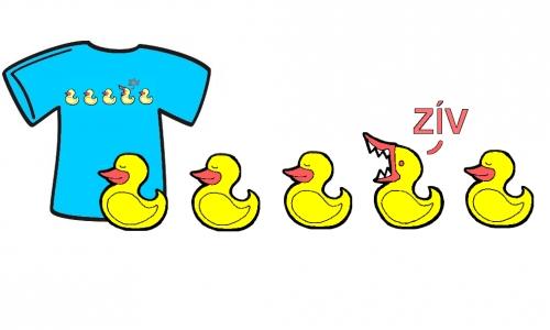 Detail návrhu duckies