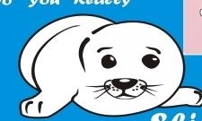 Seal Puppy