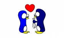 penguins love