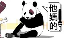 Pissed Panda