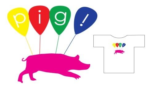 Detail návrhu pig!