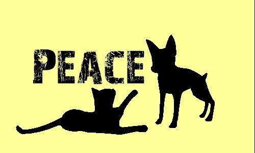Detail návrhu Peace