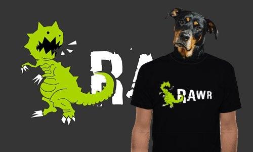 Detail návrhu RAWR