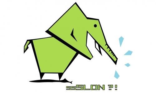 Detail návrhu ssSlon