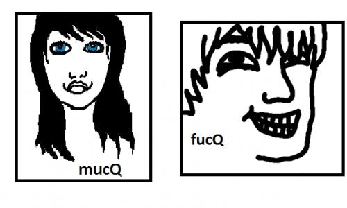 Detail návrhu mucQ,fucQ