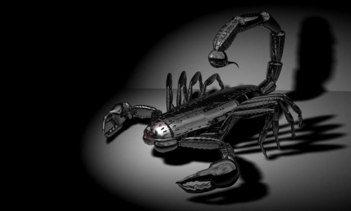 Detail návrhu Roboškorpion