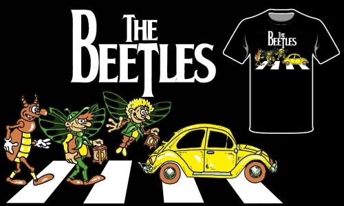 Detail návrhu Beetles