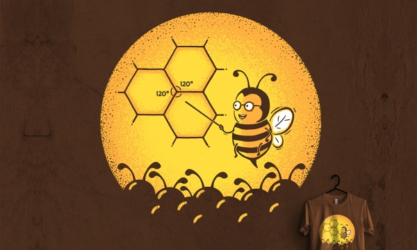 Detail návrhu Včelí univerzita