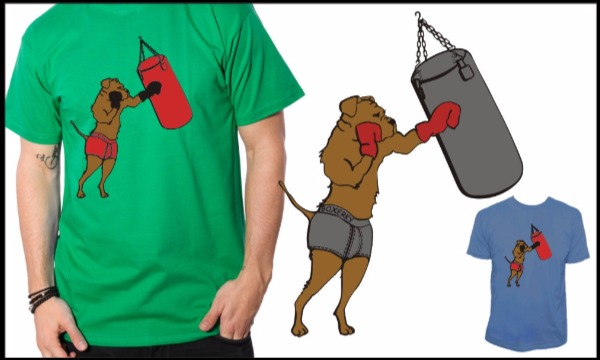 Detail návrhu Boxer