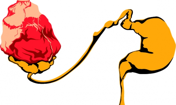 Detail návrhu Láska Prochází Žaludkem