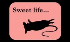 Sweet life..