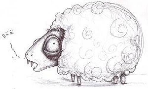 Detail návrhu ovce