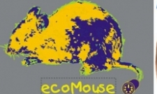 ecoMouse