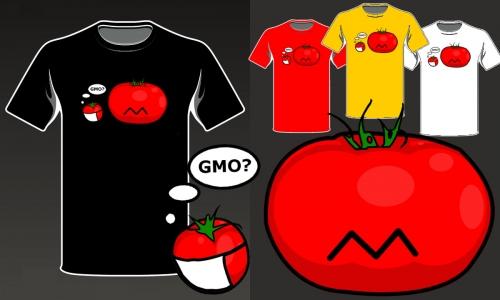 Detail návrhu GMO?