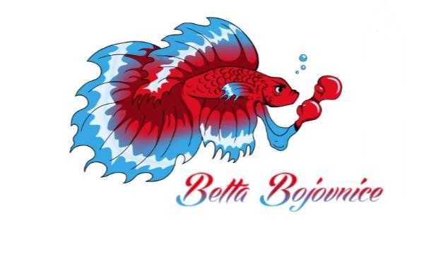 Detail návrhu Betta bojovnice