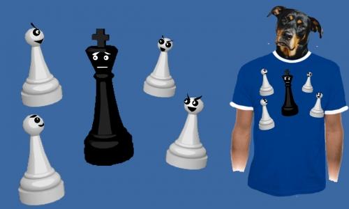 Detail návrhu Chess