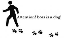 Pozor!!Šéf je pes!!