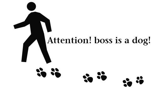 Detail návrhu Pozor!!Šéf je pes!!