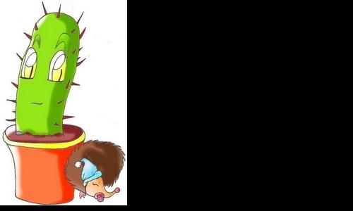 Detail návrhu Kaktus