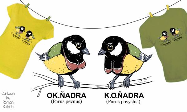 Detail návrhu Koňadra