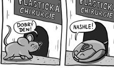 Myš na plastické operaci