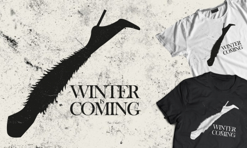 Detail návrhu winter is coming