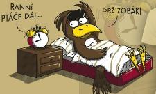 Ranní ptáče